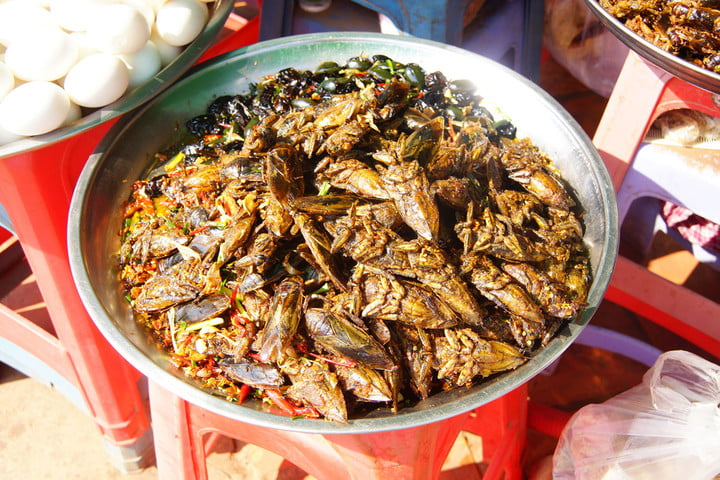 food industry experts predict future of 37425940  deep fried insects a traditional snack skoun cambodia