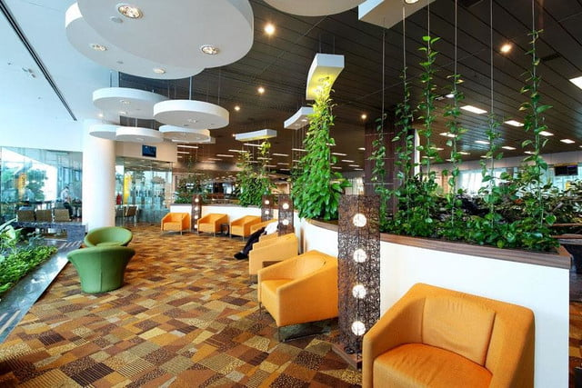 best airports for layovers changi airport sanctuary 03