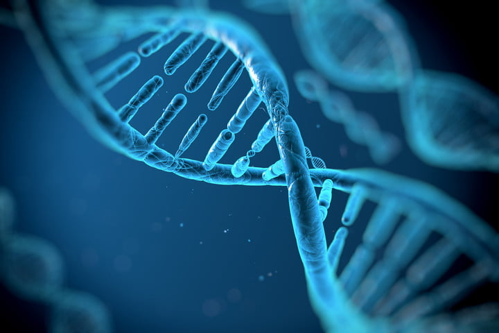 dna identification test double helix