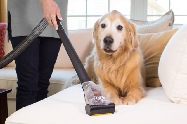 eureka vacuums pet power paw 2