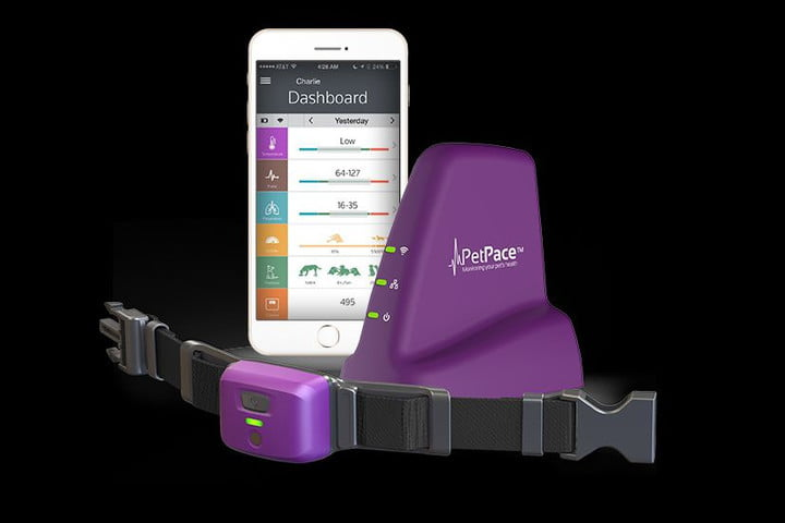 PetPace health tracker