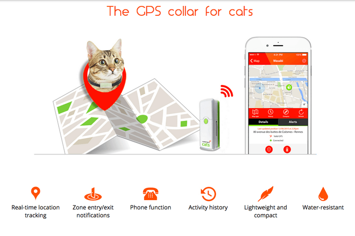 need to talk your cat you may weenects mobile phone for felines screen shot 2015 10 15 at 6 56 12 pm