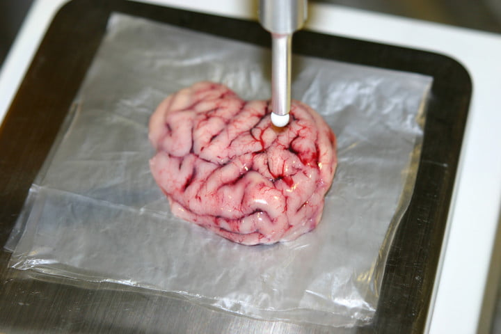 Smart scalpel tested in pig brain cancer detection tool