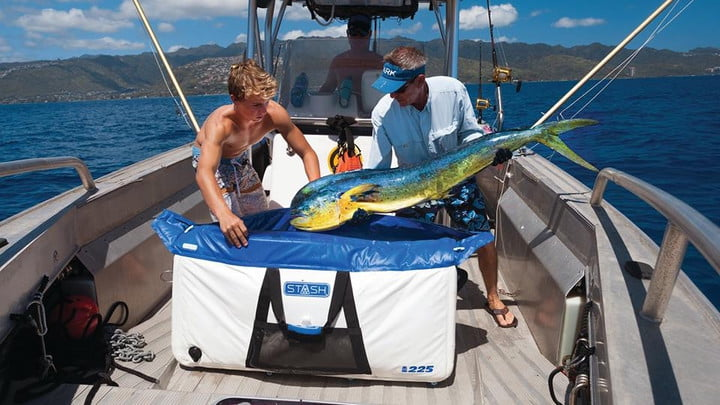 inflatable stash cooler fish