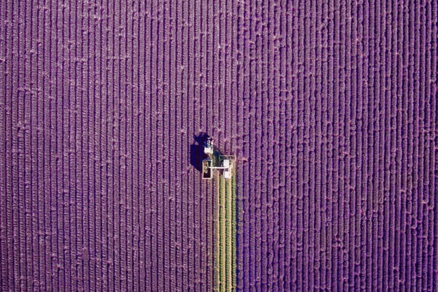 dronestagram best of 2016 valensole  provence france by jcourtial