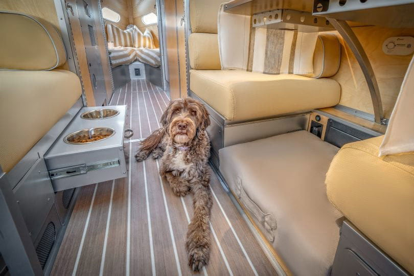 Pet-Friendly Features in the Bowlus Terra Firma Travel Trailer