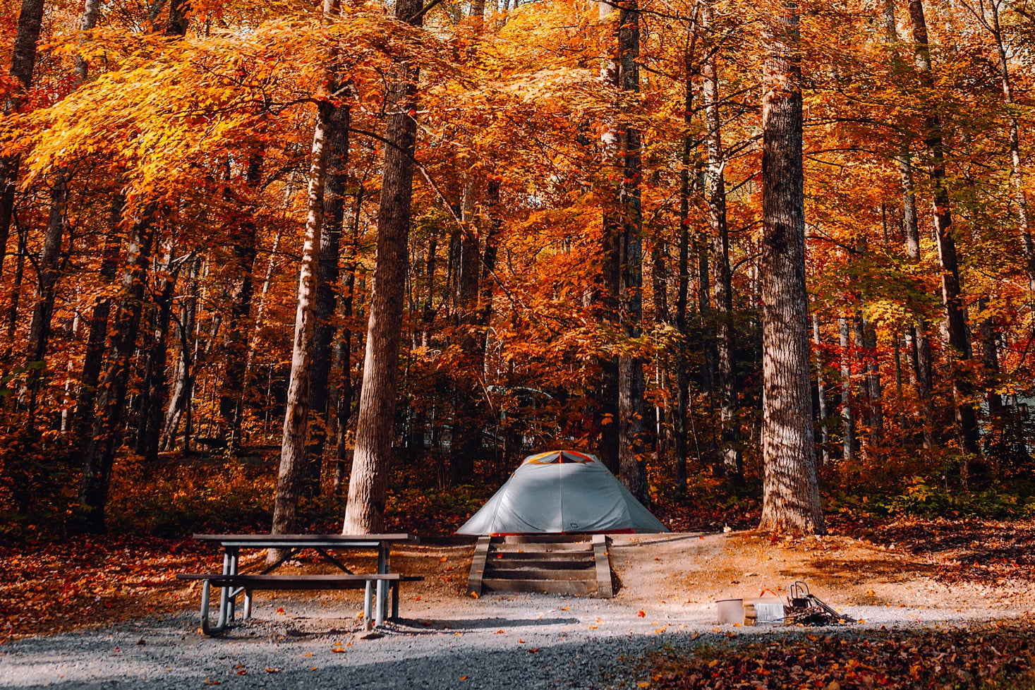 4 Things You'll Want To Pack for Camping in the Fall