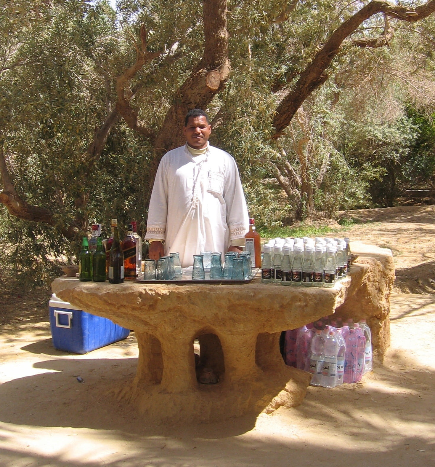 egypts eco lodge our bartender at lunch