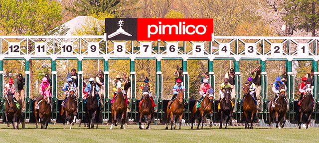 the pride of preakness stakes pimlico