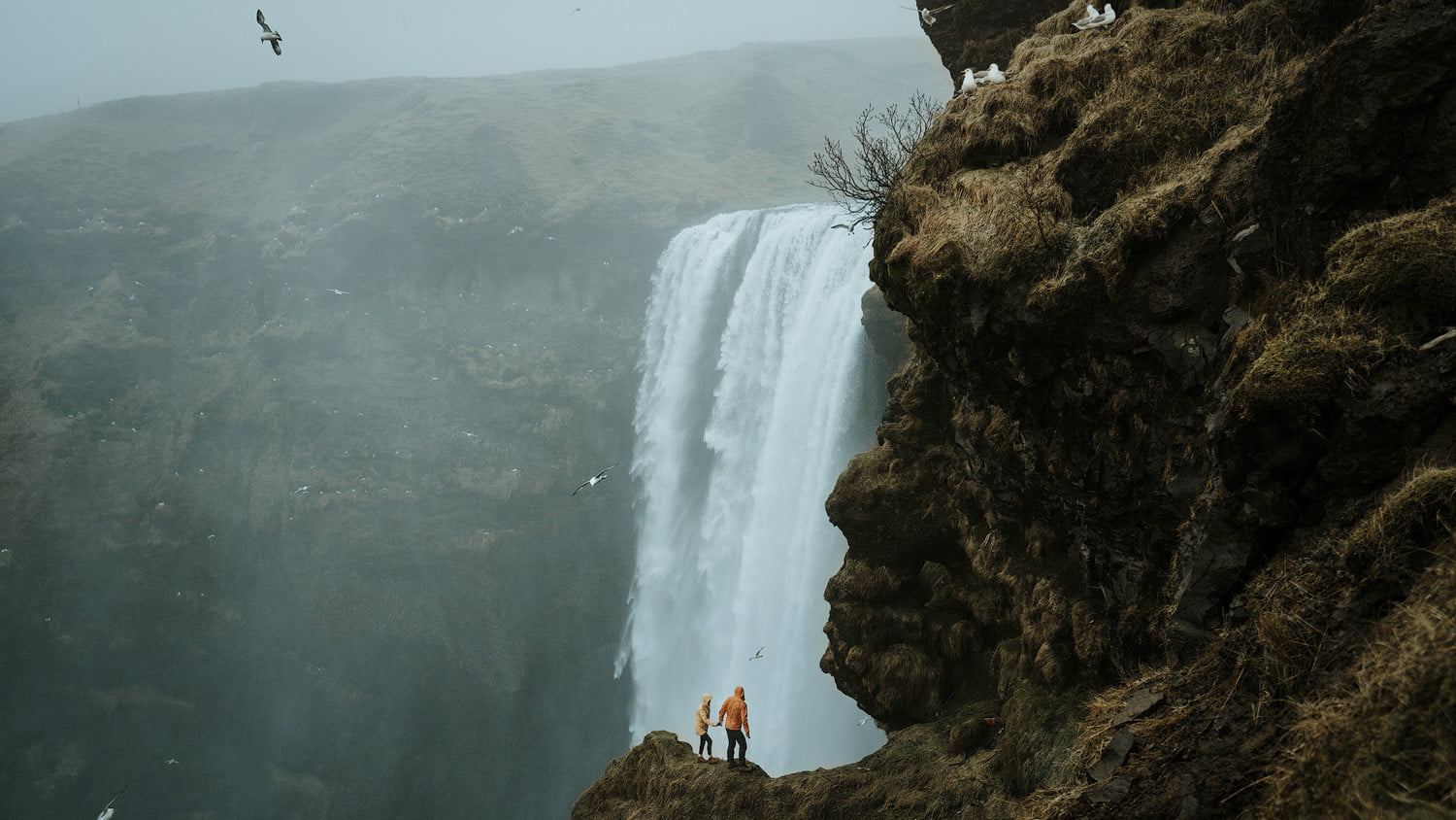 tips travel meals on the toad skogafoss iceland  renee and matt edit
