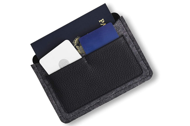 Cardholder with passport and cards.
