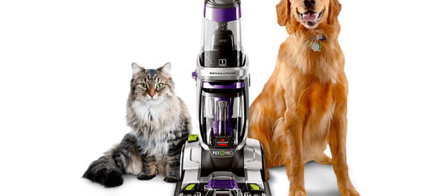 cleaning up after your pet bissell proheat 2x revolution pro carpet cleaner 1986 1024x1024