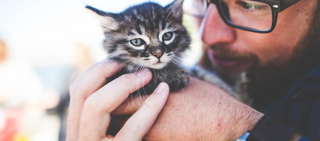 Man holding a young kitten